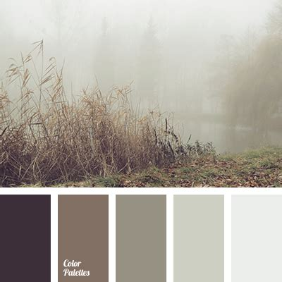 gray brown color light grey color color palette ideas