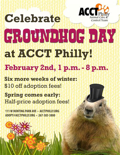 groundhog day events february adoption prices promotions and events acct philly