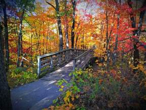 fall colors minnesota 50 best duluth mn fall colors images on