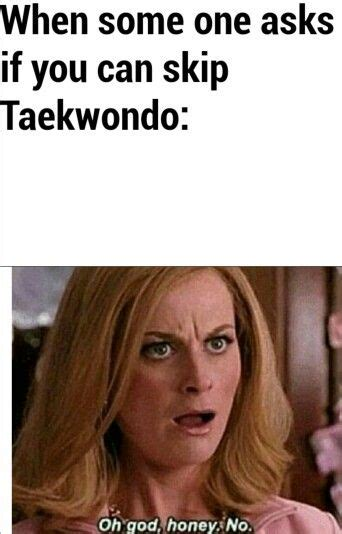 Taekwondo Memes - they just don t get it it s the best addiction i ve ever