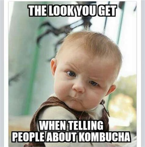 thats awesome meme that looks you get when telling about kombucha