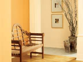 Home Interior Wall Colors by Interior Collection New Home Colors Pictures Home