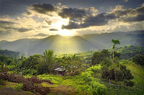 ayala highlands cebu islands philippines photograph by dale e daniel landscape photography