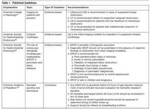 20 Page Literature Review by Buy A Essay For Cheap Literature Review On Database