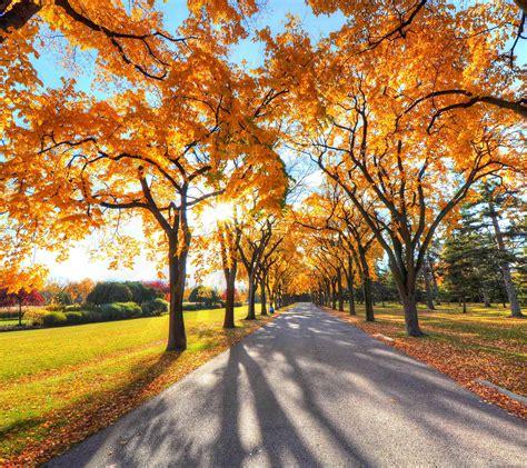 mini z boat yogi formula 66 wallpaper autumn note 3 image gt gt gt best wallpaper hd