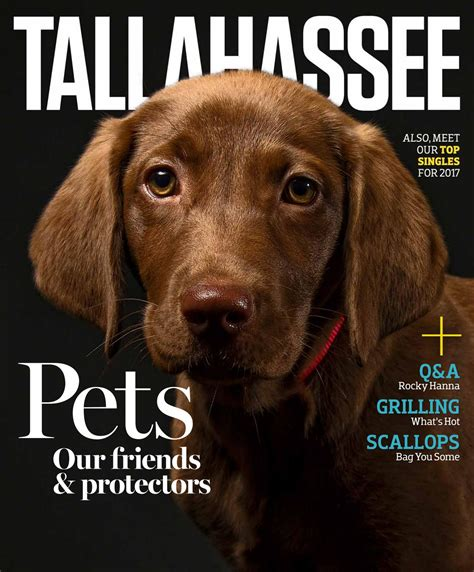 in the dog house tallahassee magazine july august 2016 tallahassee magazine july august 2017 by rowland