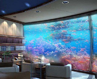 aquarium design group llc fish tank walls on pinterest fish tank wall fish tanks