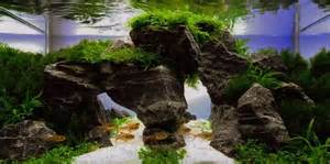 Aquascaping Stones Okay Here Is Top 300 Best Aquascape Aquariums This Is