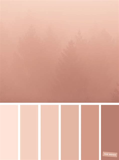 what color is blush blush tones pretty blush color scheme fabmood