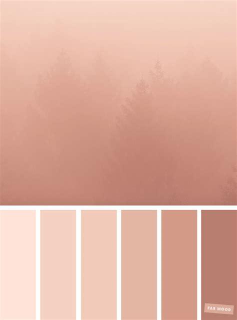 tone color in blush tones pretty blush color scheme fabmood