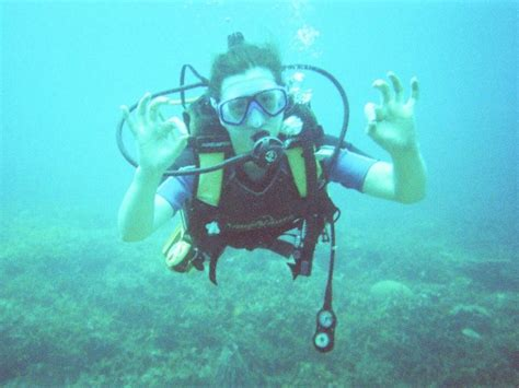dive dove dived overland underwater a charity drive uk nz a