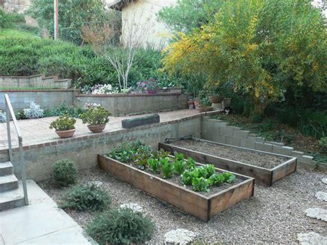 Terraced garden beds for raised vegetable garden bed plus