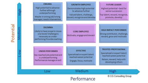 talent mapping template talent mapping the key to the workforce of the future