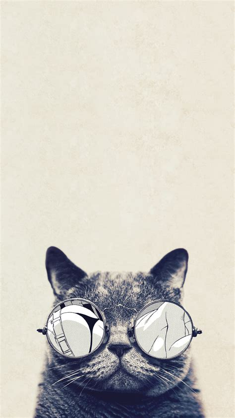 iphone wallpaper cat glasses cat glasses htc hd wallpaper best htc one wallpapers