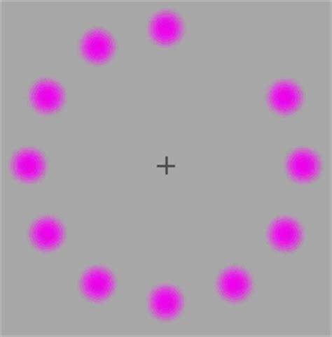 ilusiones opticas wikipedia fen 243 menos visuales lilac chaser ilusiones opticas