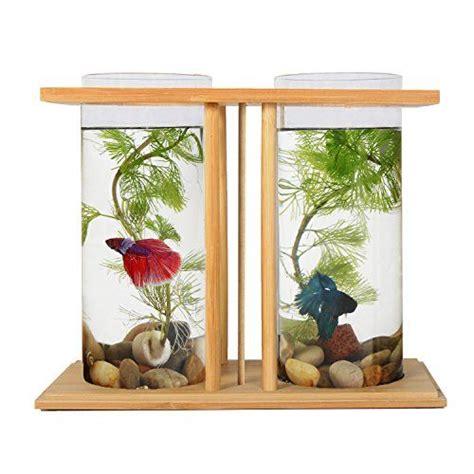 aquarium design kolkata 25 best ideas about vase fish tank on pinterest betta