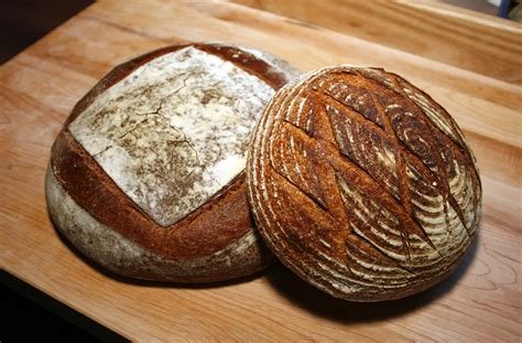 whole grains vs multigrain sourdough bread vs white bread vs whole grain or