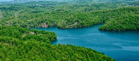 boat rentals near knoxville tn boat docks for sale norris lake tn