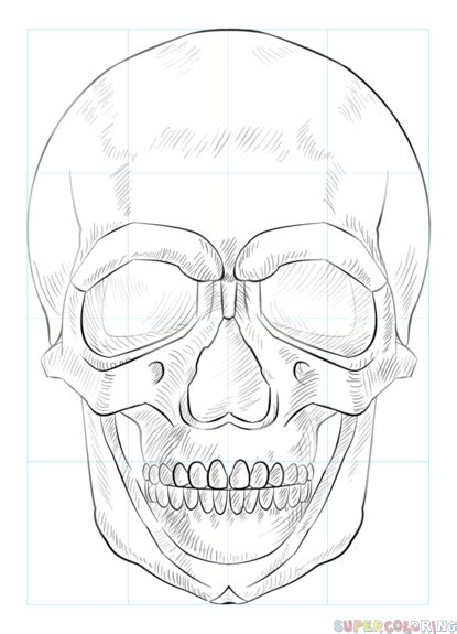 how to draw human doodle how to draw a human skull step by step drawing tutorials