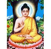 Lord Buddha Pics Image Gallery Photos &amp