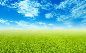sky grass wallpaper wide screen wallpaper 1080p 2k 4k