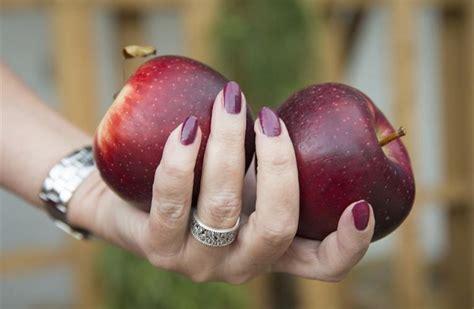 apple x australia australia first overseas trials planned for bravo apple