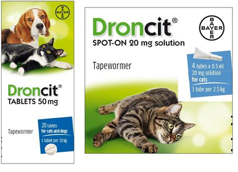 droncit for dogs droncit tapeworm tablet and spot on tapeworm tablet spot on
