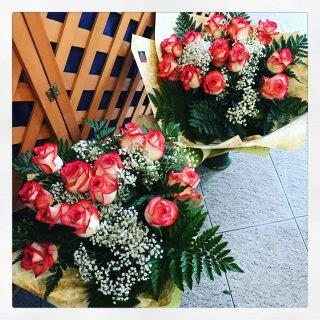 fiore perdono fiori per chiedere perdono
