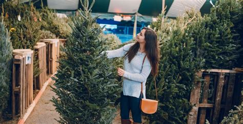 10 best places to get a christmas tree in us 10 places to get a real tree around vancouver daily hive vancouver