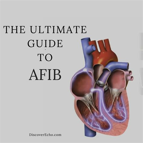the informed patient a complete guide to a hospital stay the culture and politics of health care work books what is atrial fibrillation the ultimate guide to afib