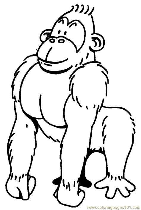 gorilla outline coloring page gorilla coloring pages getcoloringpages com