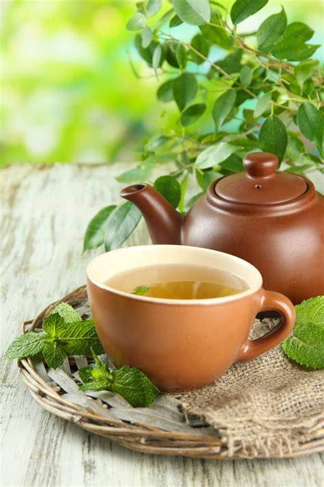 Garden Of Tea Herbal Tea Garden Plans For Stress Colds Flus And More
