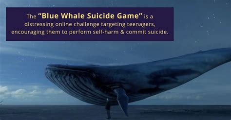 wale gane the blue whale game an important discussion warning