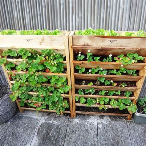 Vertical Garden Planters by 94 Best Images About Pallet Planters On