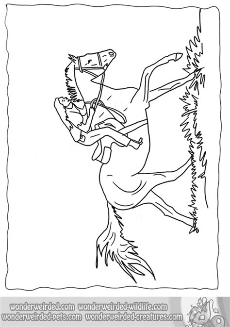 coloring pages of horse riding girl and horse jumping coloring pages coloring home