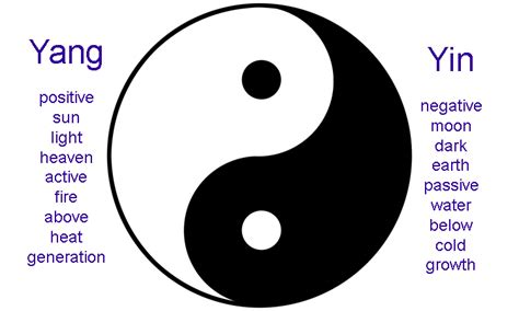 What Does The Yin Yang Symbolize | demystifying male and female energies petrozzi wellness
