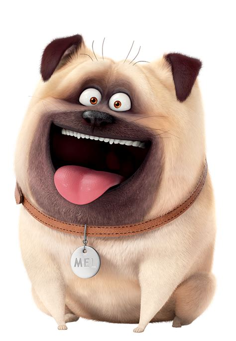 mel the pug la nuez la vida secreta de las mascotas anima actividades wallpaper