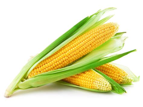 what is a corn corn recipe a rich succulent summertime dessert