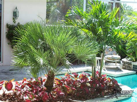 tri county landscape our gallery tricounty landscaping