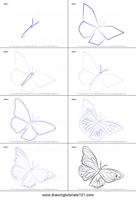 how to draw a step by step how to draw a monarch butterfly printable step by step drawing sheet