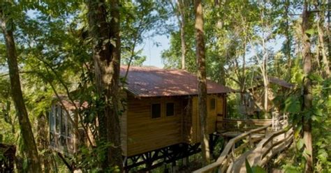 tree house layout at belize treehouses belize tree houses belize tree houses belize treehouse resorts river view