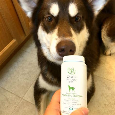 make bathtime fun for your dog make bathtime fun with pura naturals pet shoos