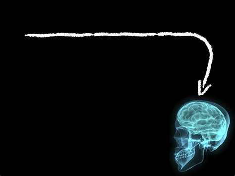 templates for powerpoint brain brain slide