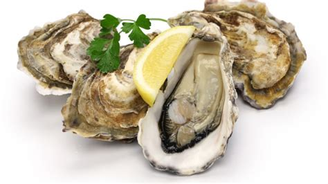 Oyster Health food warning oysters recalled in bc canada journal news of the world