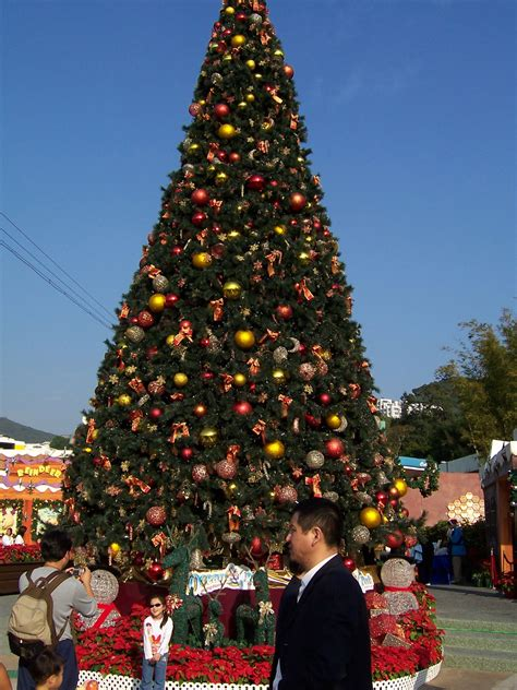 file ocean park christmas tree jpg wikipedia