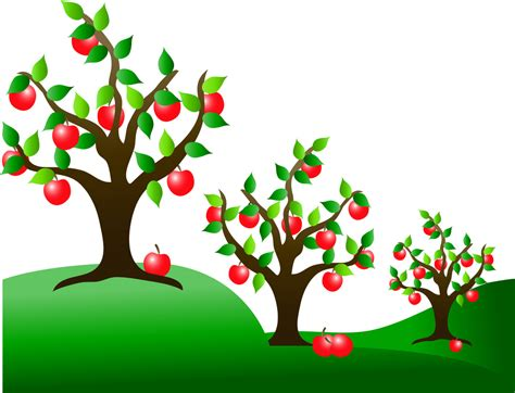 apple tree clipart clip illustration of apple trees in an orchard a