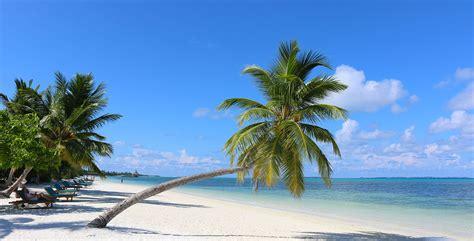 Designer Table by Maldives Meedhoo Canareef Resort Maldives 4 Plage