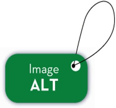 alt image tag tips and tricks how to add alt tags for images in
