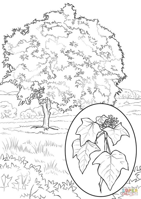 new year tree coloring page 75 ideas dibujo de arbol frutal on christmashappynewyears