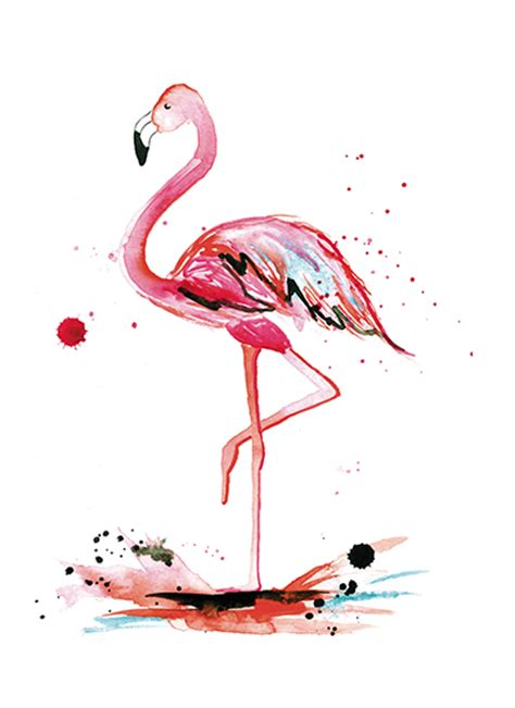 art prints pink flamingo at minted com
